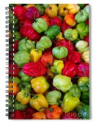 Colorful Chili Pepper Spiral Notebook