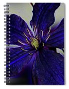 Colorful Clematis Spiral Notebook