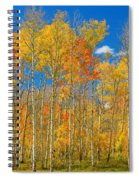 Colorful Colorado Autumn Landscape Spiral Notebook