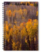 Colorful Colorado Autumn Landscape Vertical Image Spiral Notebook
