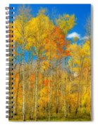 Colorful Colorado Fall Foliage Spiral Notebook
