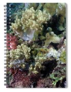 Colorful Coral Reef Spiral Notebook