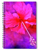 Colorful Cosmic Flower-hibiscus Spiral Notebook