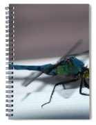 Colorful Dragon Spiral Notebook