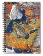 Colorful Earth History Spiral Notebook