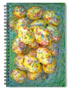 Colorful Eggs Spiral Notebook