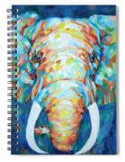 Colorful Elephant Spiral Notebook