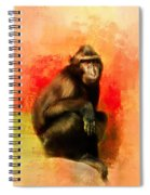 Colorful Expressions Black Monkey Spiral Notebook