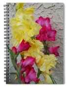 Colorful Glads Spiral Notebook