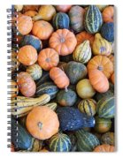 Colorful Gords  Spiral Notebook