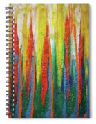 Colorful Grace Spiral Notebook