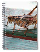 Colorful Grasshopper Spiral Notebook