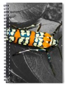 Colorful Insect - Ornate Bella Moth Spiral Notebook