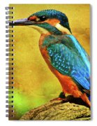 Colorful Kingfisher Spiral Notebook