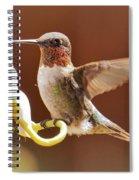 Colorful Landing Spiral Notebook