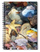 Colorful Leaves And Rocks In Creek Spiral Notebook
