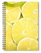 Colorful Limes Spiral Notebook