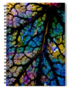 Colorful Lines Spiral Notebook