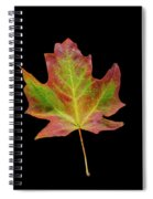 Colorful Maple Leaf Spiral Notebook