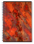 Colorful Metal Abstract With Border Spiral Notebook