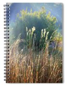 Colorful Morning Marsh Spiral Notebook