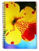 Colorful Pansies Spiral Notebook