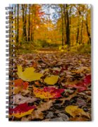Colorful Path Spiral Notebook