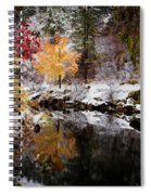 Colorful Pond Spiral Notebook