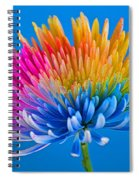 Colorful Precious Spiral Notebook