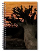 Colorful Roots Spiral Notebook