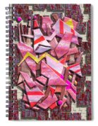 Colorful Scrap Metal Spiral Notebook