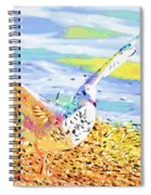 Colorful Seagull Spiral Notebook