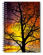 Colorful Silhouette Spiral Notebook