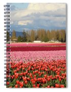 Colorful Skagit Valley Tulip Fields Panorama Spiral Notebook