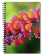 Colorful Snapdragon Spiral Notebook