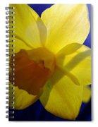 Colorful Spring Floral Spiral Notebook