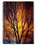 Colorful Tree Silhouettes Spiral Notebook
