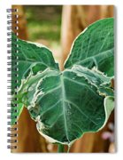 Colorful Tropical Foliage 1 Spiral Notebook
