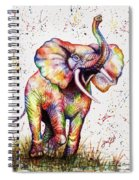 Colorful Watercolor Elephant Spiral Notebook