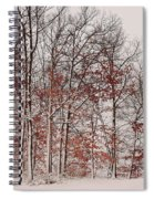 Colorful Winters Day Spiral Notebook