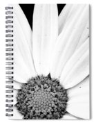 Colorless Spiral Notebook