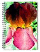 Colormax 3 Spiral Notebook