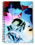 Colors 4 Spiral Notebook