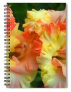 Colors Of August Spiral Notebook