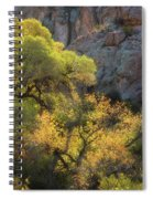 Colors Of Autumn In The Sonoran  Spiral Notebook