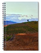 Colors Of Sicily Spiral Notebook