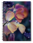 Colors Of Spring Spiral Notebook