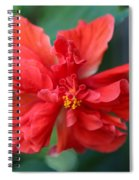 Colors Of The Tropics Hibiscus Spiral Notebook