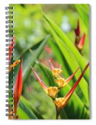 Colors Of The Tropics Spiral Notebook
