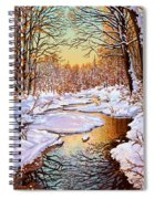 Colors Of Winter Spiral Notebook
